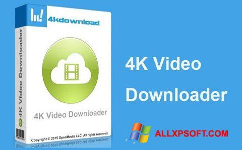 Captura de pantalla 4K Video Downloader para Windows XP