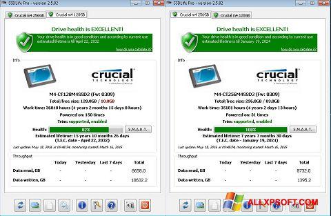 Captura de pantalla SSDLife para Windows XP