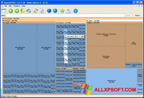 Captura de pantalla SpaceSniffer para Windows XP