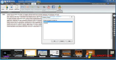 Captura de pantalla Snagit para Windows XP