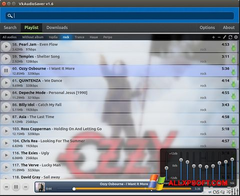Captura de pantalla VkAudioSaver para Windows XP