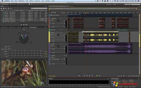 Captura de pantalla Adobe Audition para Windows XP