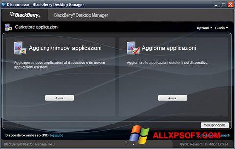 Captura de pantalla BlackBerry Desktop Manager para Windows XP