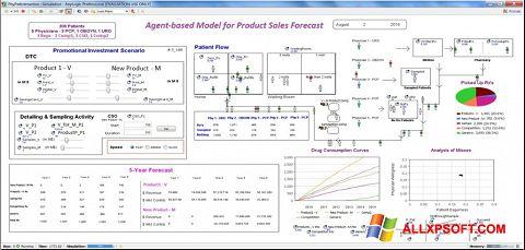 Captura de pantalla AnyLogic para Windows XP